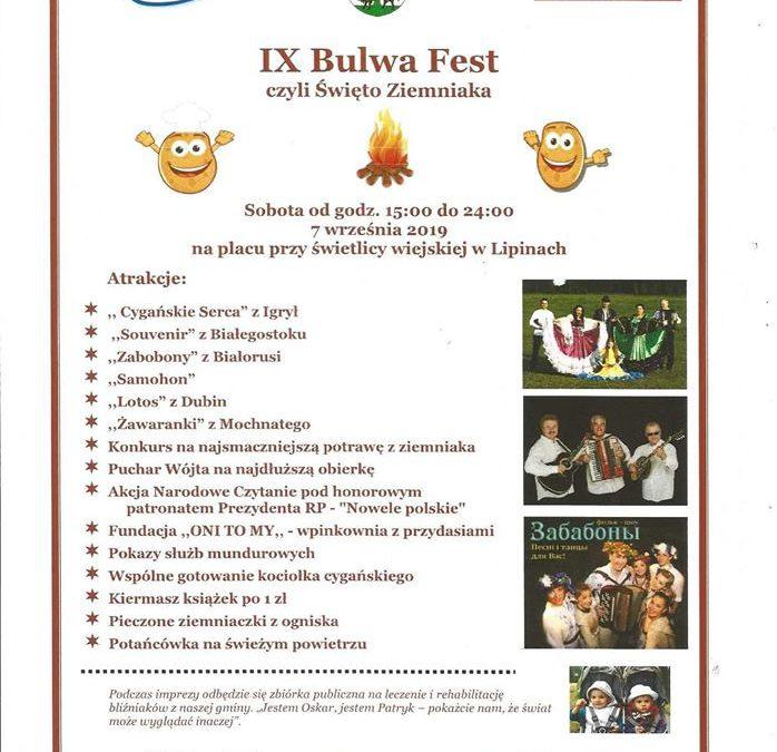 """07.09.2019r.: IX edycja """"Bulwa Fest"""" naplacu przy świetlicy wiejskiej wLipinach"""